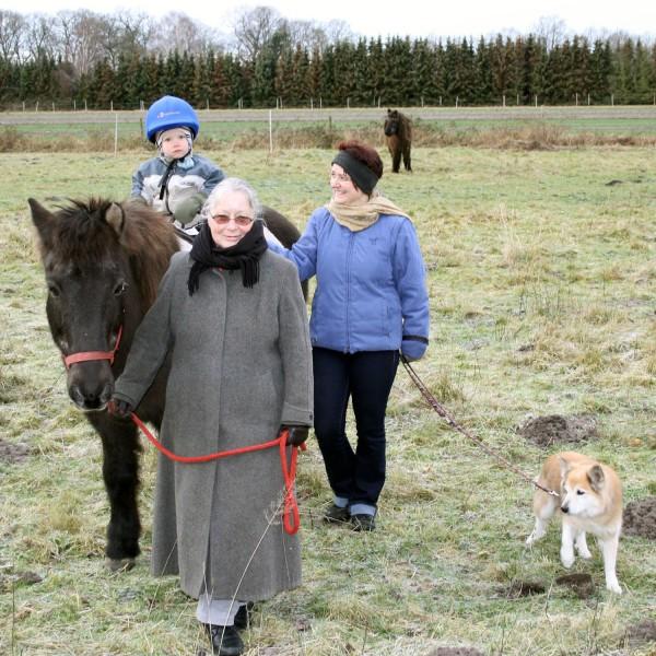 spaziergang-mit-altem-pferd