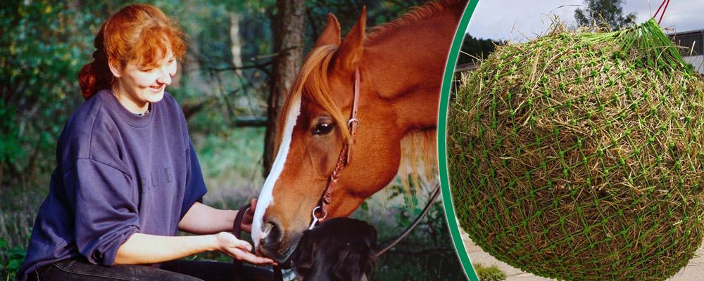 Pferdezubehör & praktische Helfer